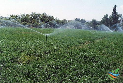 انتخاب بهترین سیستم های آبیاری با توجه به شرایط منطقه ای و کیفیت آبیاری
