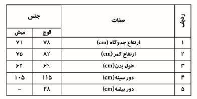 وضعیت پرورش گوسفند داشتی و مرتعی ( بلوچی ) در استان یزد