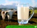 بهداشت شیر و روش هایی برای کاهش بار میکروبی شیر