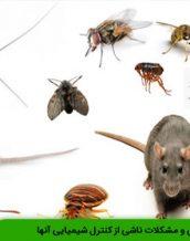 آفت انباری و مشکلات ناشی از کنترل شیمیایی آنها