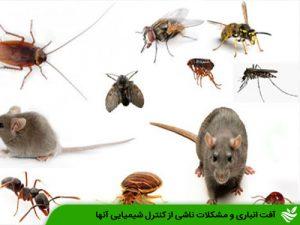 آفات انباری و مشکلات ناشی از کنترل شیمیایی آنها