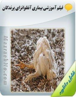 دانلود فیلم آموزشی بیماری آنفلوانزای پرندگان