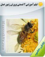 دانلود فیلم آموزش ۲ قسمتی پرورش زنبور عسل