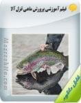 فیلم آموزش پرورش ماهی قزل آلا