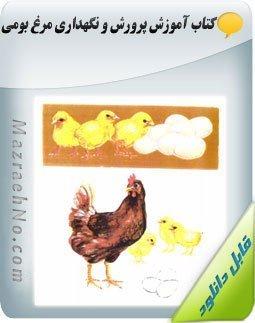 دانلود کتاب پرورش و نگهداری مرغ بومی Image