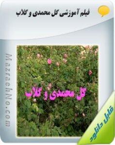 فیلم آموزشی گل محمدی و گلاب