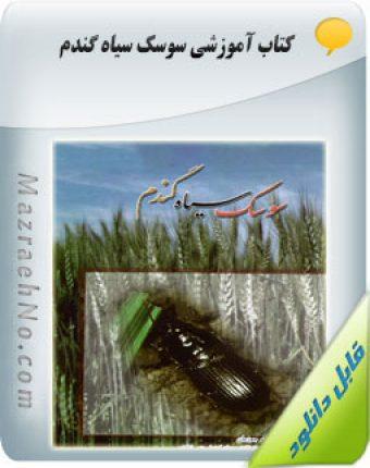 دانلود کتاب سوسک سیاه گندم