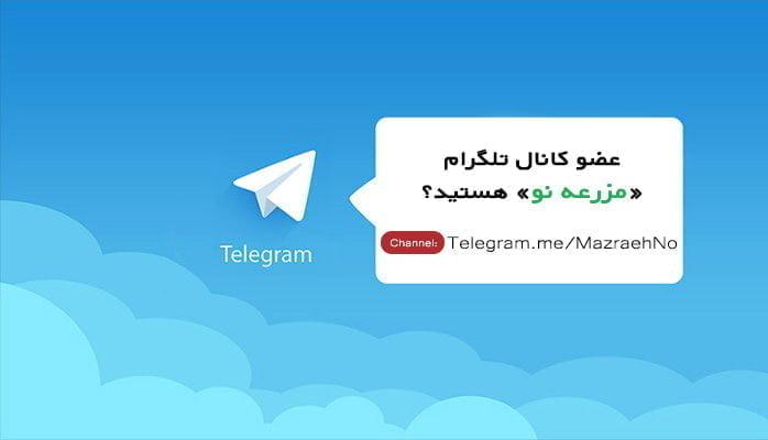کانال تلگرام مزرعه نو