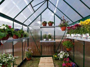 آشنایی با گلخانه های خانگی