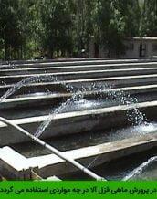 آب برگشتی در پرورش ماهی قزل آلا در چه مواردی استفاده می گردد؟