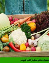 با تولید محصول سالم بیشتر آشنا شویم