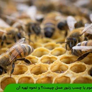 بره موم یا چسب زنبور عسل چیست؟ و نحوه تهیه آن