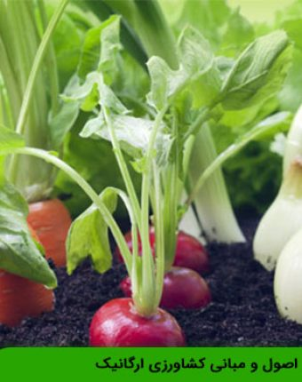 آشنایی با اصول و مبانی کشاورزی ارگانیک