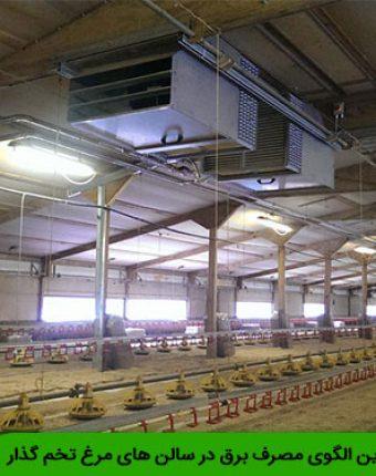 مناسب ترین الگوی مصرف برق در سالن های مرغ تخم گذار