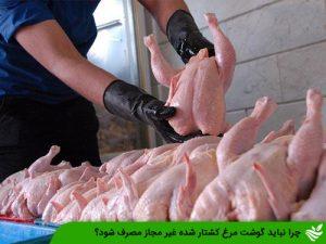 چرا نباید گوشت مرغ کشتار شده غیر مجاز مصرف شود؟