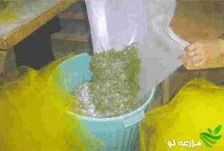 مواد ضدعفونی کننده در پرورش کرم ابریشم