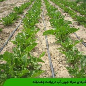 راهکارهای صرفه جویی آب در زراعت چغندرقند