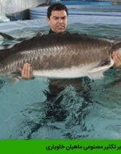 مقدمه ای بر تکثیر مصنوعی ماهیان خاویاری