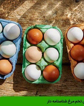 ویژگی های تخم مرغ شناسنامه دار