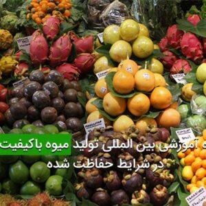 کارگاه آموزشی بین المللی تولید میوه باکیفیت بالا در شرایط حفاظت شده