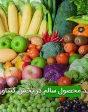 تولید محصول سالم در بخش کشاورزی
