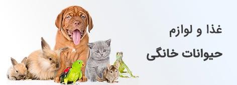 غذا و لوازم حیوانات خانگی