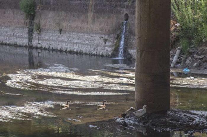 آب آلوده رودخانه ها