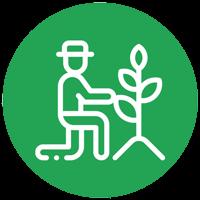 باغداری