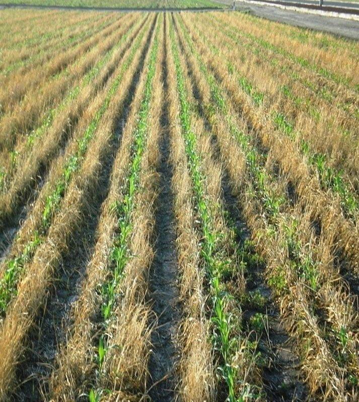 کاهش فرسایش خاک در اثر استفاده از کشاورزی حفاظتی