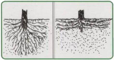 کنترل فرسایش خاک