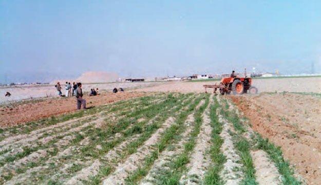خاک ورزی اولیه