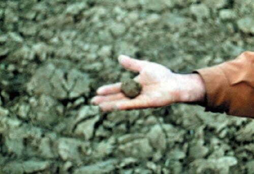 آزمایش گاورو بودن خاک