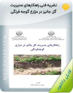 نشریه فنی راهکارهای مدیریت گل جالیز در مزارع گوجه فرنگی