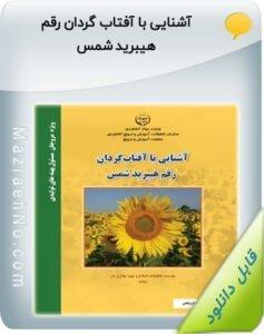 نشریه ترویجی آشنایی با آفتاب گردان رقم هیبرید شمس