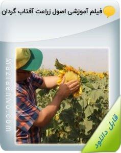 فیلم آموزشی اصول زراعت آفتاب گردان