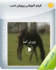 فیلم آموزشی پرورش اسب