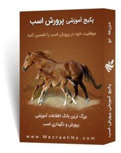پکیج آموزشی پرورش اسب