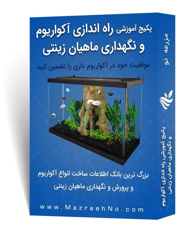 پکیج آموزشی راه اندازی آکواریوم و نگهداری ماهیان زینتی