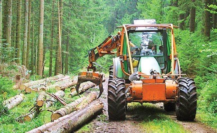 جابه جایی چوب های جنگلی