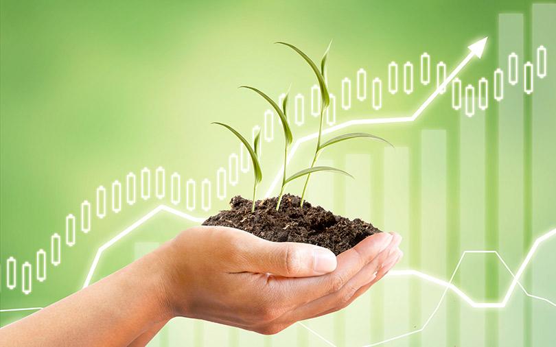 بیمه محصولات کشاورزی و فواید آن