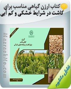 کتاب ارزن گیاهی مناسب برای کاشت در شرایط خشکی و کم آبی