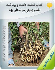 کتاب کاشت، داشت و برداشت بادام زمینی در استان یزد