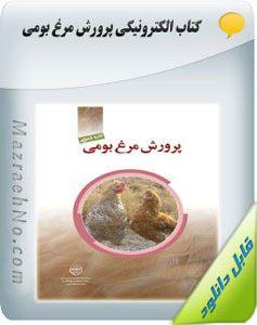 کتاب آموزش پرورش مرغ بومی