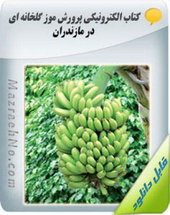کتاب آموزش پرورش موز گلخانه ای در مازندران