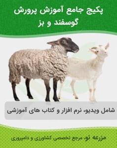 پکیج آموزش پرورش گوسفند و بز