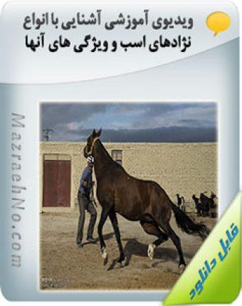 ویدیوی آموزشی آشنایی با انواع نژادهای اسب و ویژگی های آنها