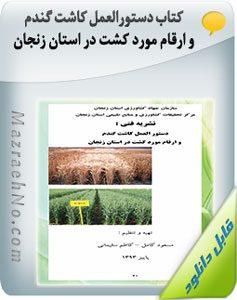 کتاب دستورالعمل کاشت گندم و ارقام مورد کشت در استان زنجان