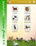 دانشنامه پرورش گوسفند و بز | اپلیکیشن اندروید گوسفندداری