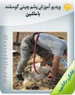 ویدیو آموزش پشم چینی گوسفند با ماشین