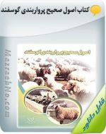 کتاب اصول صحیح پرواربندی گوسفند